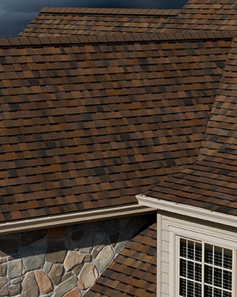 shingle roof - roofing company